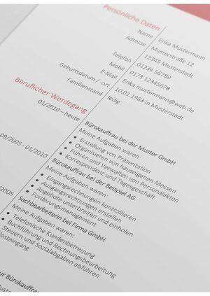 Lebenslauf Vorlage 12 Detail